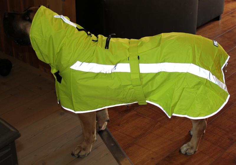 Regndekken stor hund