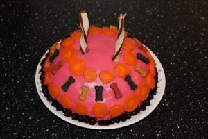 kake til hund