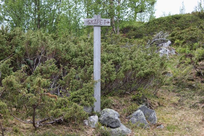 Skåpet i Tundradalen