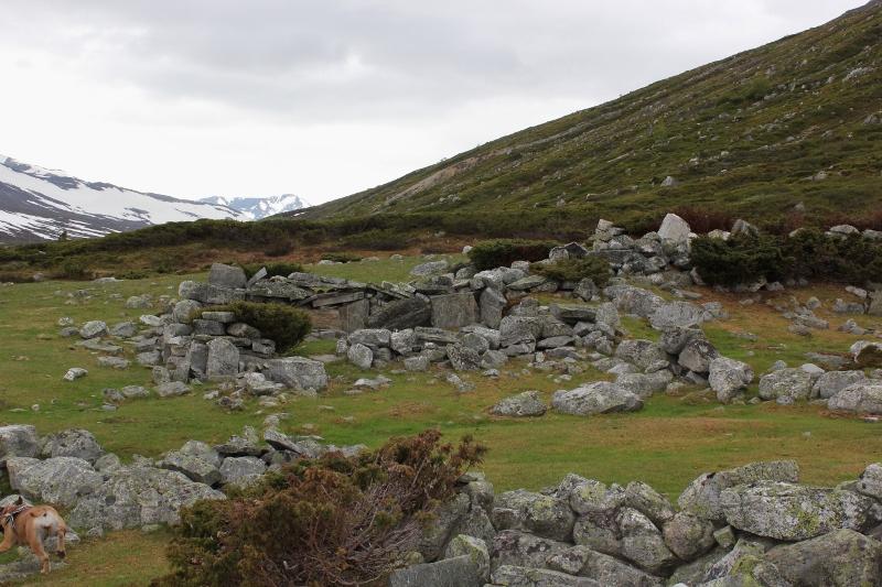 Gammelstulen Tundradalen