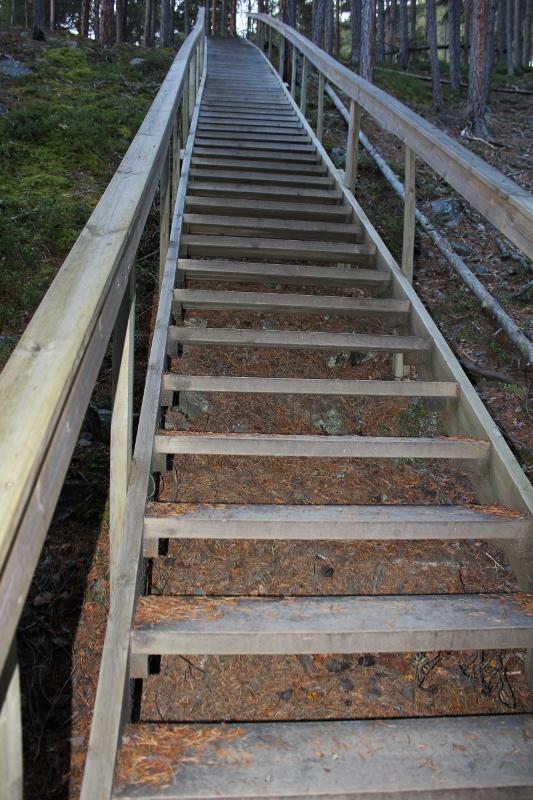Kvitskriuprestein trapp