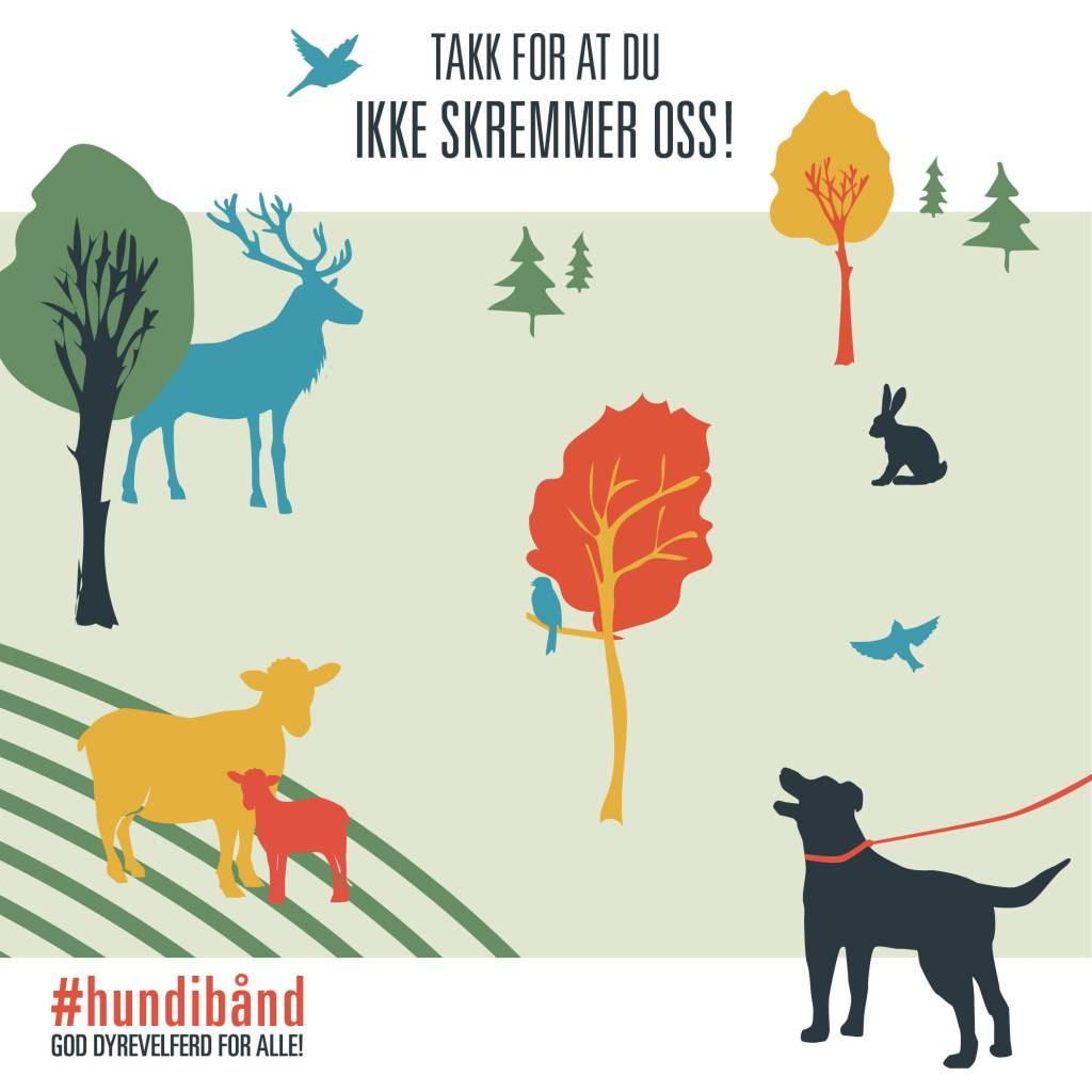 hundibaand_facebook