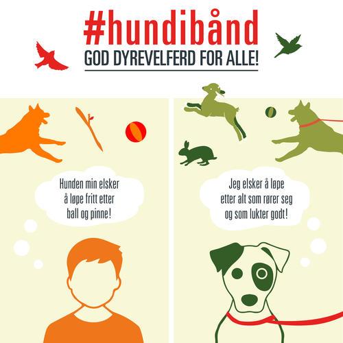 Hundibaand_facebook.jpg (content)