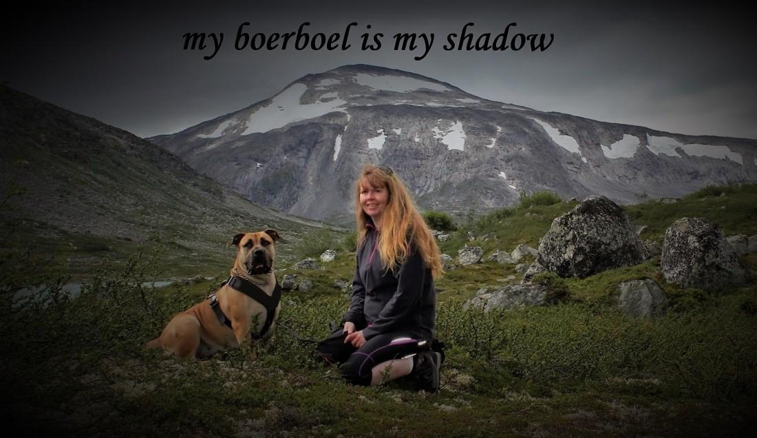 shadow boerboel 2 - Kopi (2147x1108)