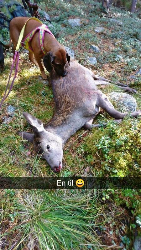 Snapchat-1049472787 (450x800)
